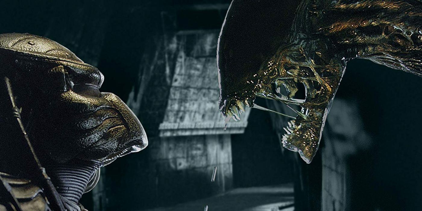 TV and Movie News All 6 Predator Movies Ranked (Including