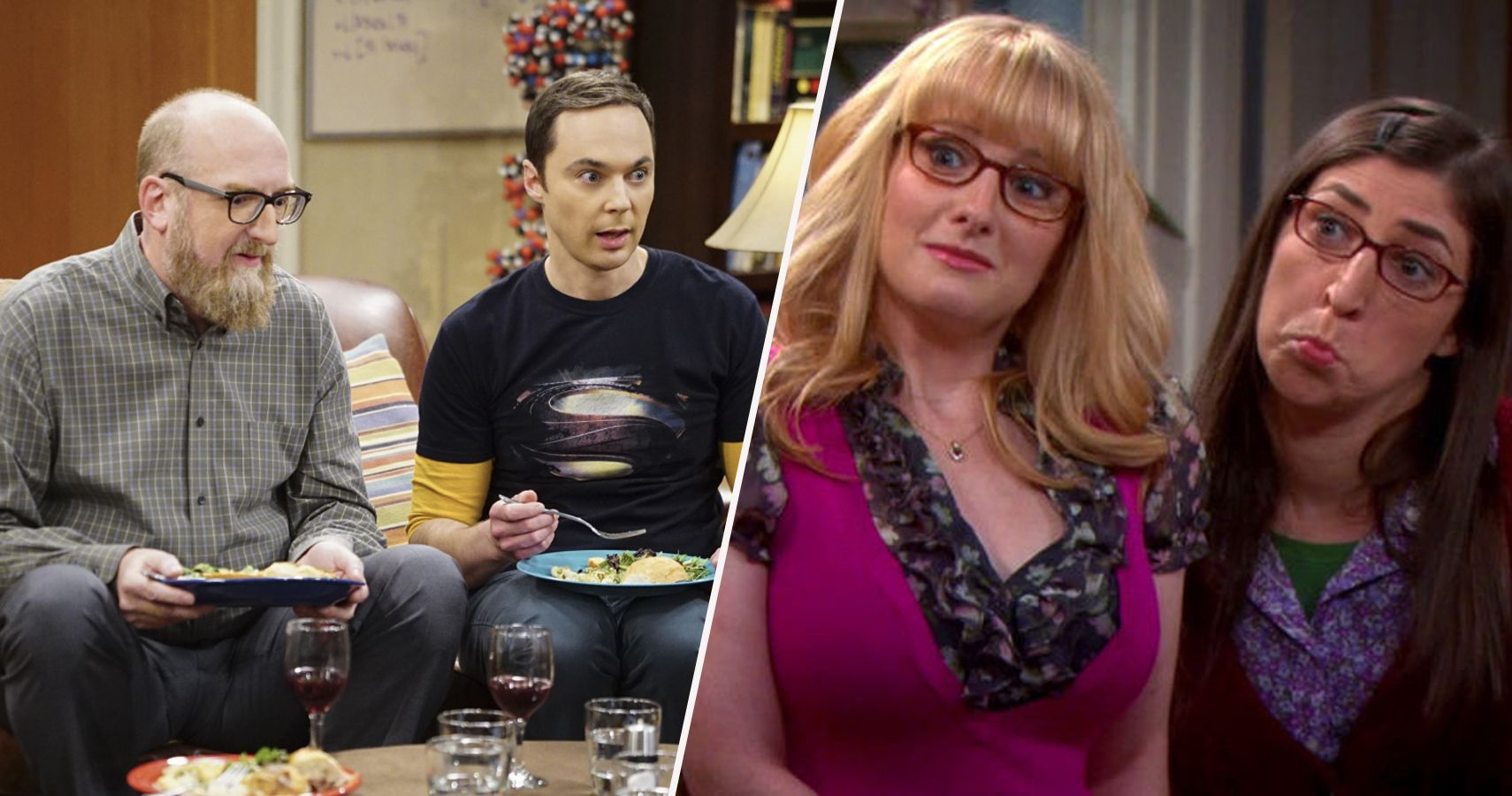 big bang theory cast and their spouses