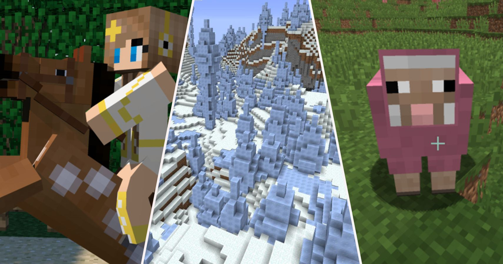 Minecraft 20 Hidden Things Only Real Fans Know How To Find