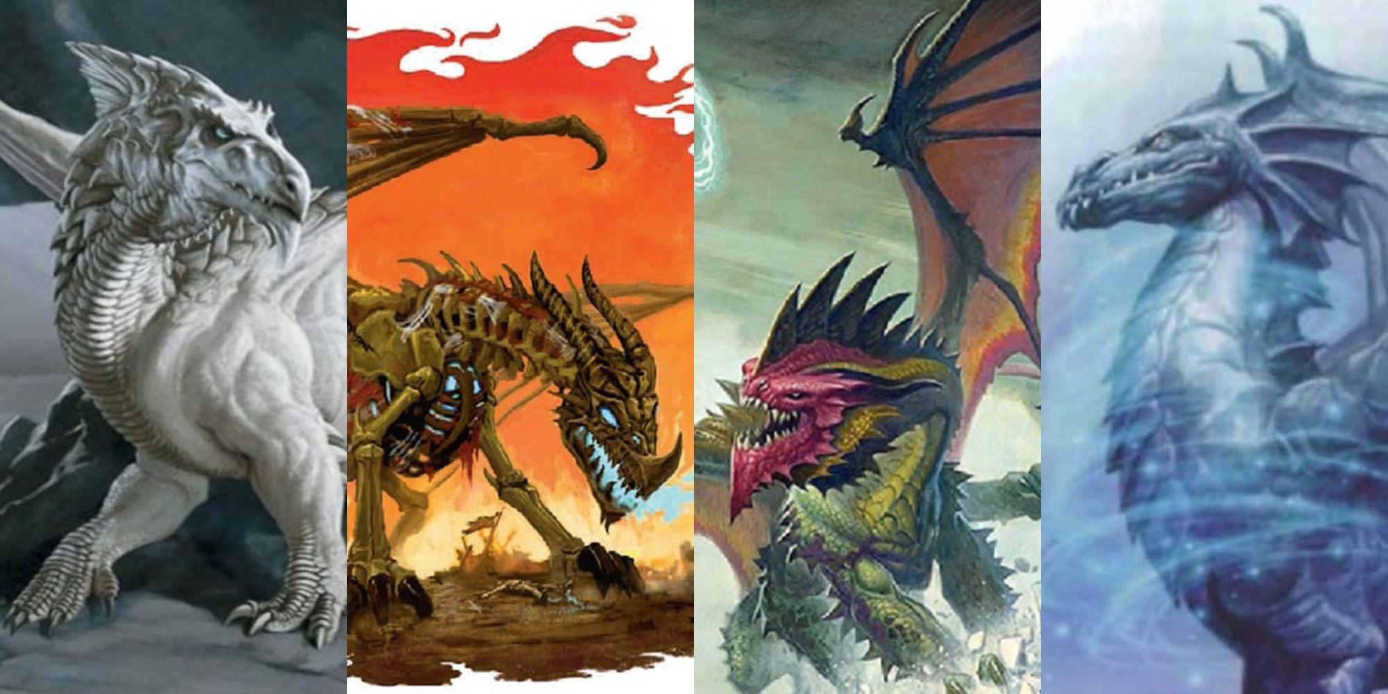 ancient gold dragon vs ancient red dragon