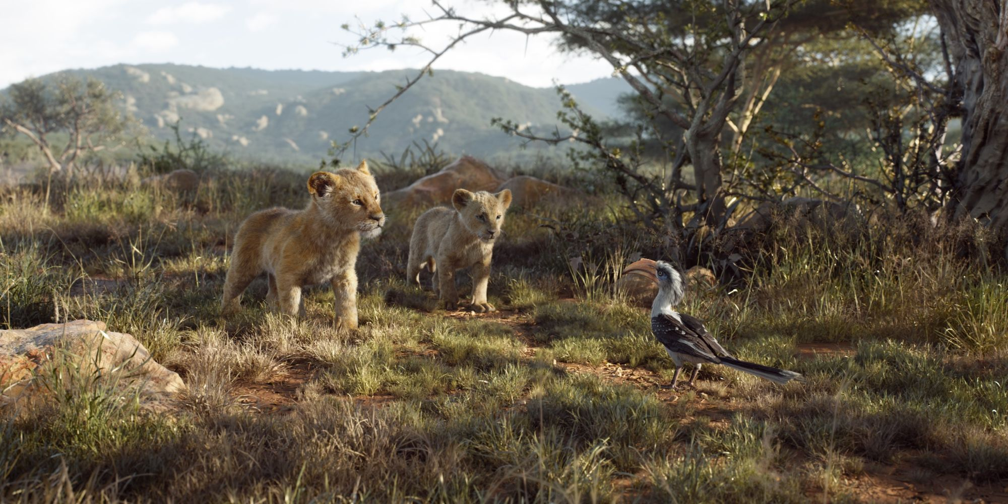 How The Lion King Blends Live Action 3d Animation Screen Rant