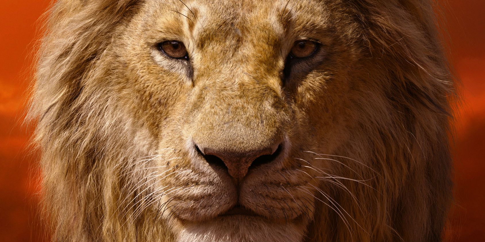 Lion King 2019 Movie Posters: Lion King Character Posters Reveal Best Look At Timon