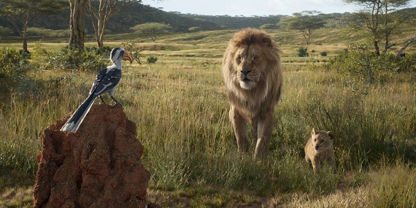 Tv And Movie News Lion King Everything Disneys New Movie