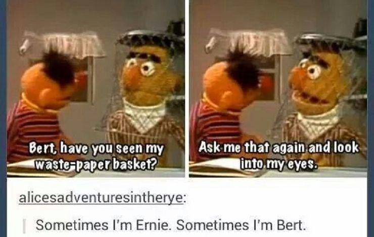 Sesame Street 10 Hilarious Adorable Bert And Ernie Memes