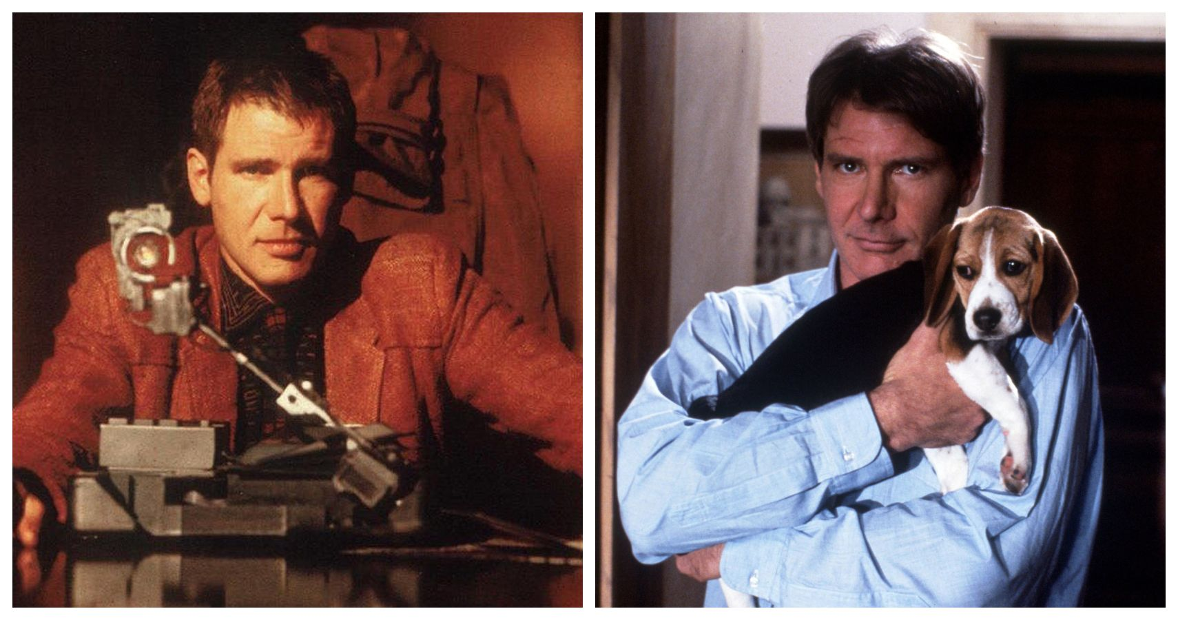 MBTI®: Which Harrison Ford Character Are You? | ScreenRant