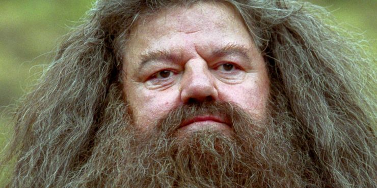 Harry Potter 5 Ways Hagrid Was The Best Hogwarts Professor 5 He Was The Worst