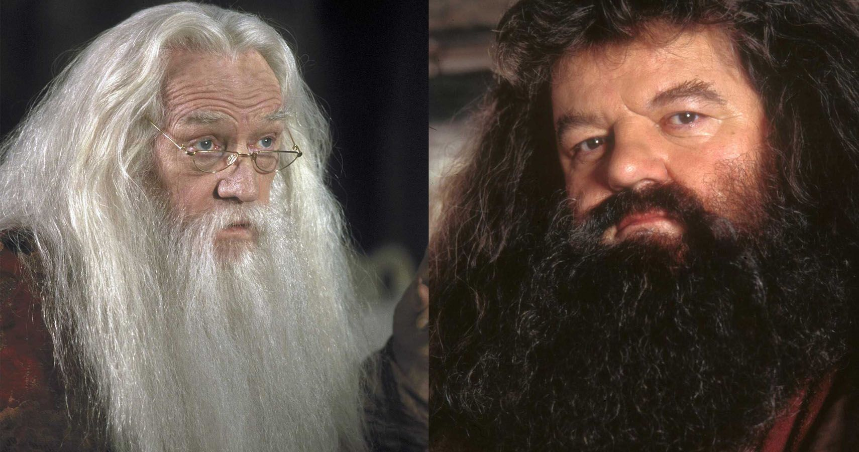 Harry Potter Dumbledor
