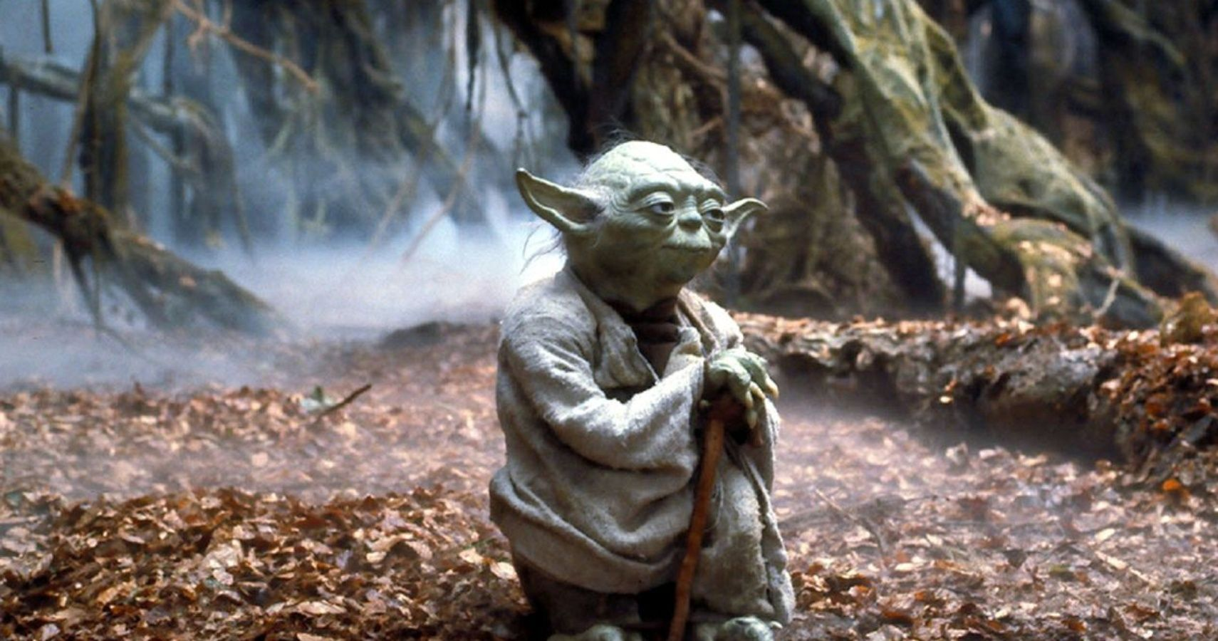 Star Wars The 10 Best Yoda Quotes About The Force Screenrant