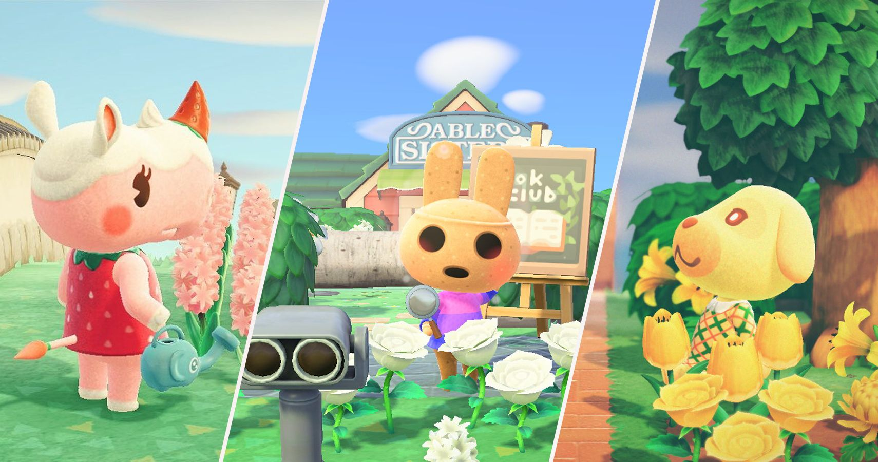 Animal Crossing New Horizons The 15 Best Normal Villagers
