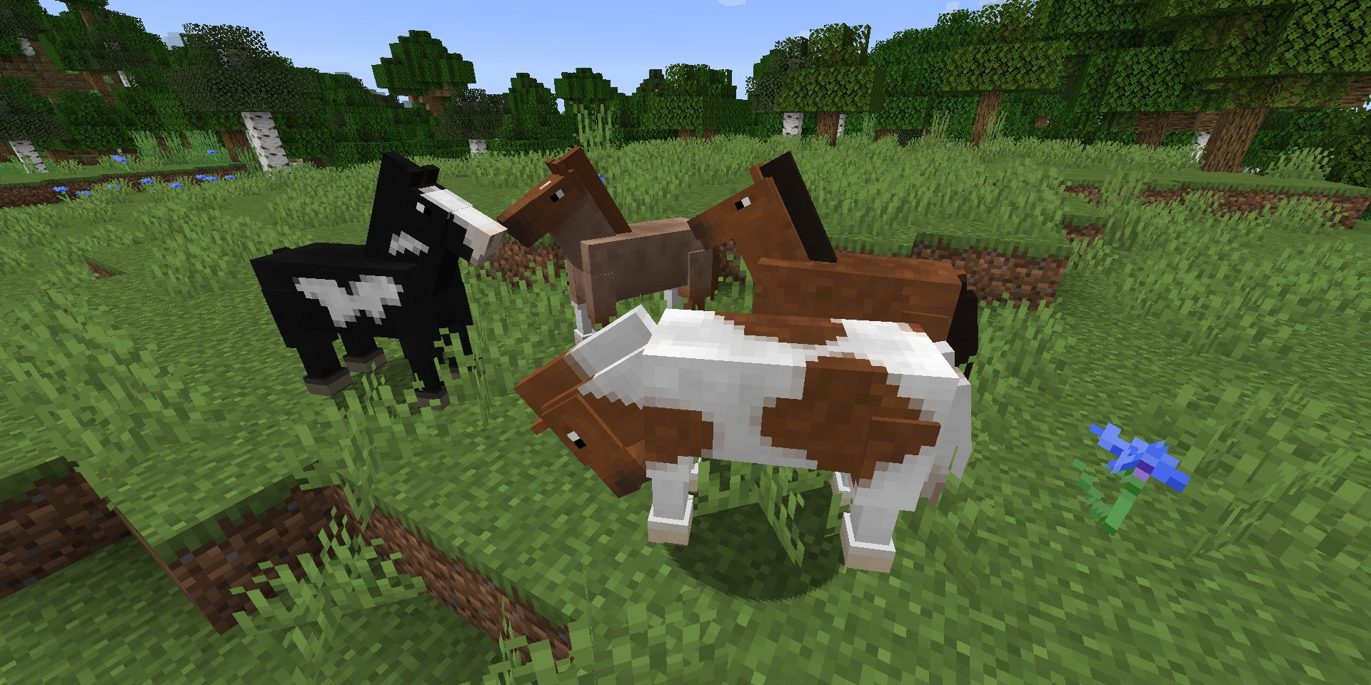 How to Breed Horses in Minecraft  Screen Rant