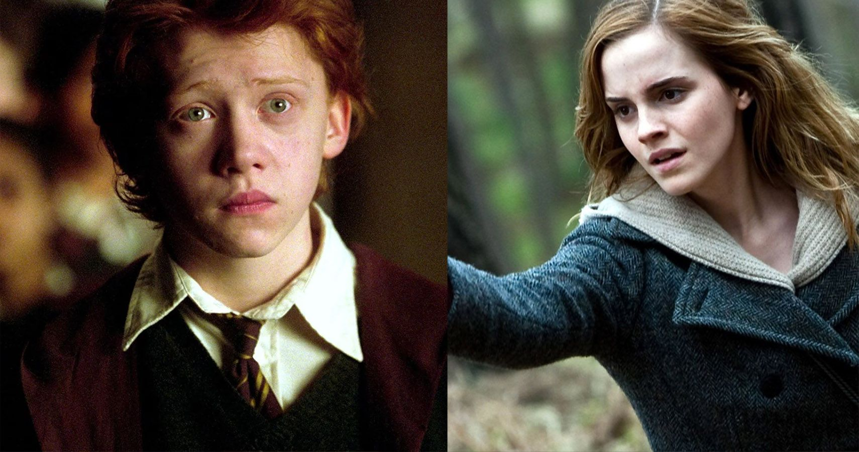 Did marry ron hermione why Harry Potter: