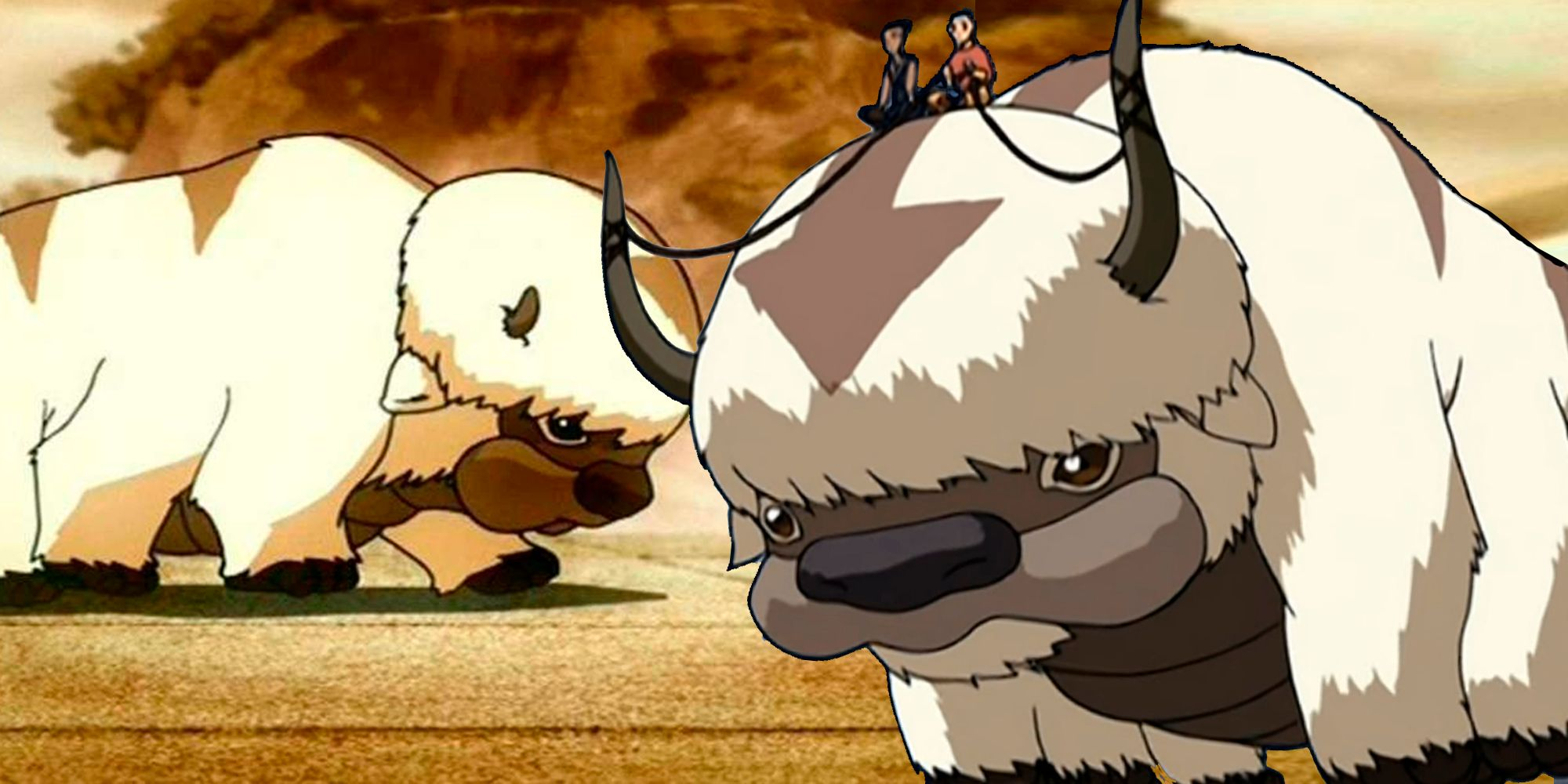 Avatar: What Happened To Appa After The Last Airbender Ended