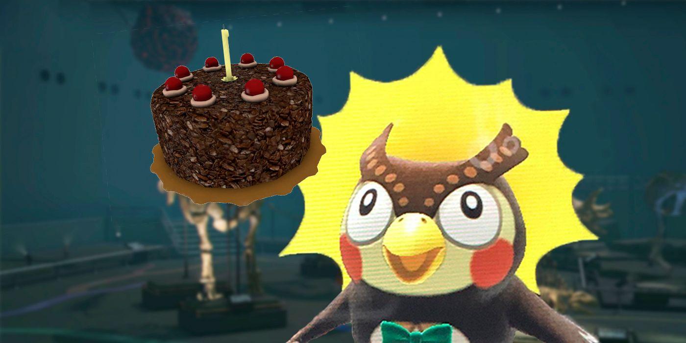 Animal Crossing Cake Meme Leaves Blathers As Confused As Everyone Else
